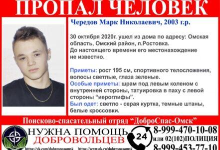В Омском районе ищут 17-летнего подростка