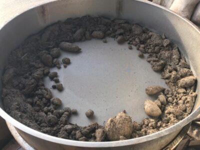 Омскими пограничниками пресечена попытка вывоза ценных рачков Артемия Салина