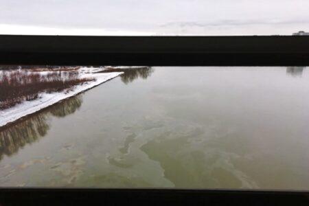 Факт загрязнения Иртыша под Омском подтвердили в Росприроднадзоре