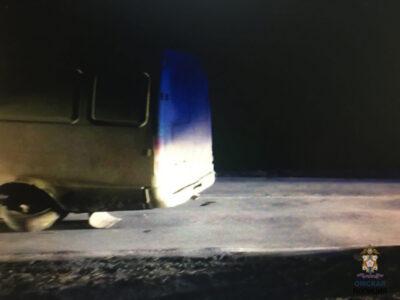 Мужчина погиб на Омской трассе, ремонтируя колесо