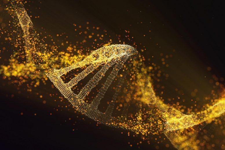 Лечение рака может ускорить старение клеток