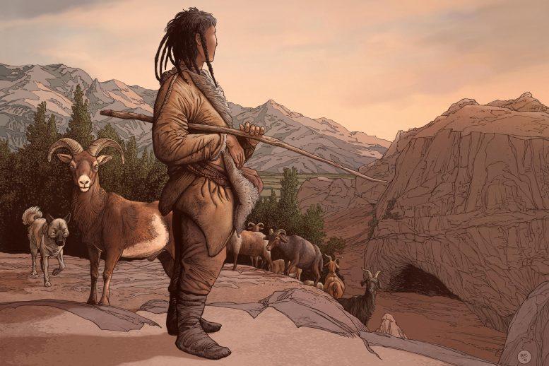 Корни одомашнивания животных в Центральной Азии уходят на 8000 лет назад