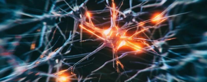 Новый диагностический инструмент предсказывает риск болезни Альцгеймера с точностью 90%