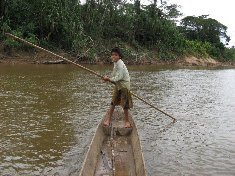 Коренные жители Амазонки могут стать ключом к замедлению старения