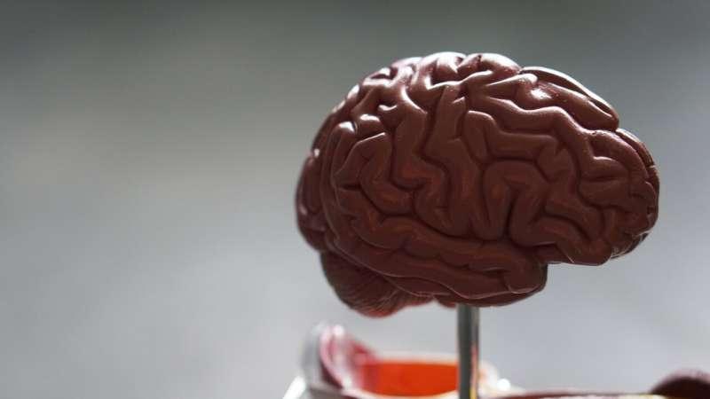 Исследование связывает дефицит энергии мозга с предрасположенностью к мигрени