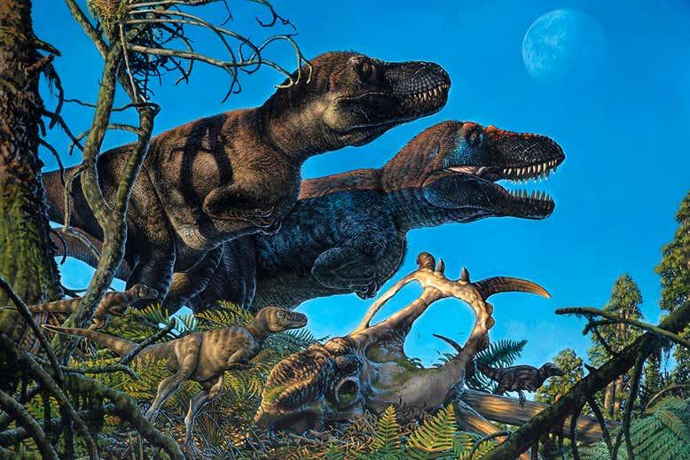 Динозавры жили в Арктике около 70 миллионов лет назад