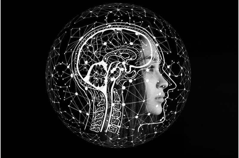 ИИ предсказывает возраст мозга по сигналам ЭЭГ, записанным во время сна