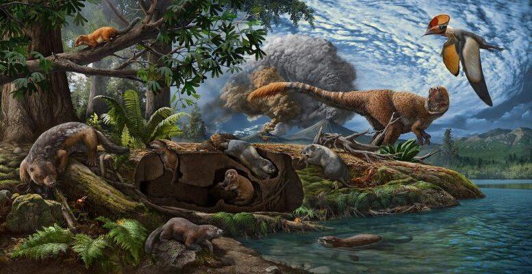 В Китае обнаружены два новых вида древних предков роющих млекопитающих
