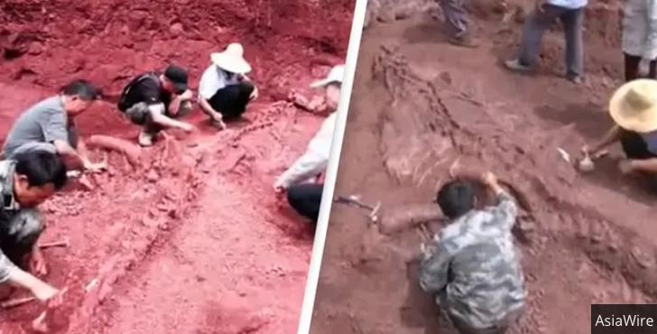 В Китае обнаружили огромного почти нетронутого динозавра
