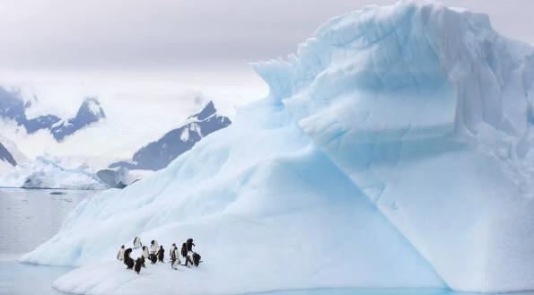 Антарктида была открыта за 1100 лет до того, как её нашли жители Запада