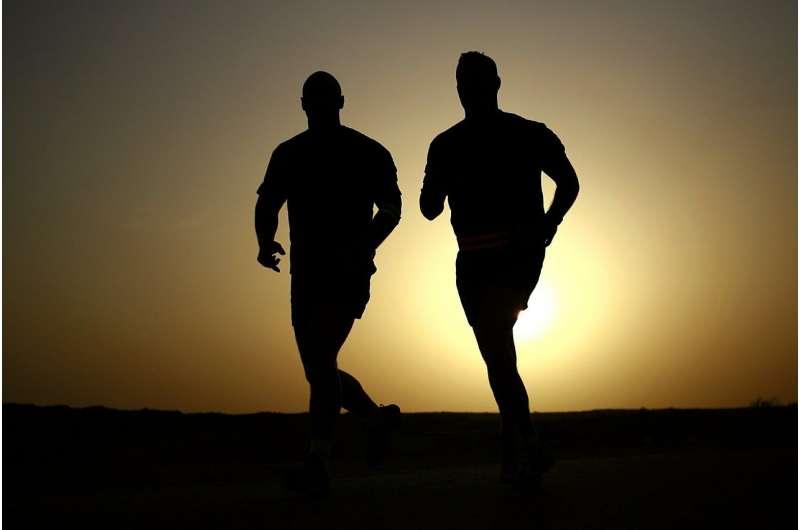 Исследование показало, что интенсивные тренировки временно нарушают функцию митохондрий