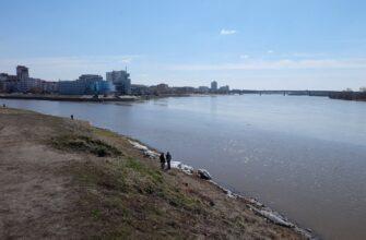 Омские волонтеры помогли в уборке берега Иртыша