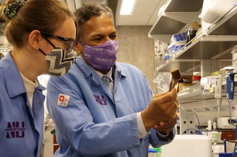 Новый «швейцарский армейский нож» убирает загрязнения с воды