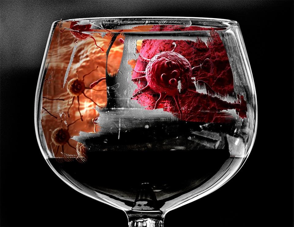 Умеренное употребление алкоголя связано с повышенным риском рака