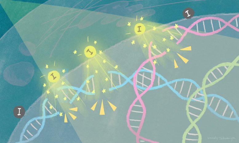 Квантовая физика помогает разрушать ДНК и разрушать раковые клетки