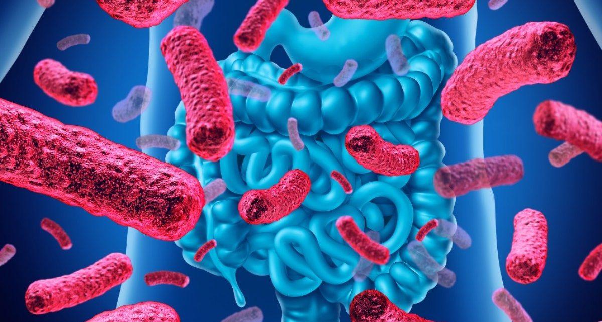 У детей с риском диабета может восстановиться микробиота при помощи фекальной трансплантации