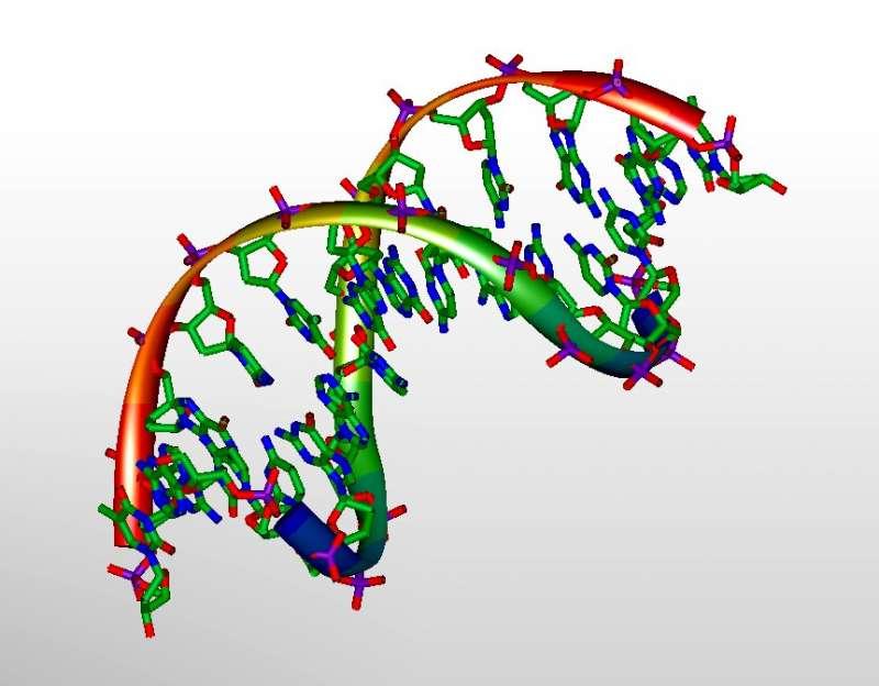 Учёные обнаружили лучший способ идентифицировать варианты ДНК