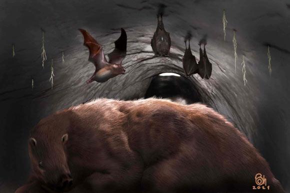 В Аргентине найдена 100 000-летняя окаменелость гигантской летучей мыши-вампира