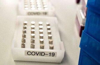 Редактирование генов блокирует передачу вируса в клетках человека