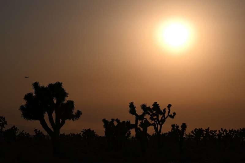 Климатические «загадки» по-прежнему озадачивают ученых, несмотря на прогресс