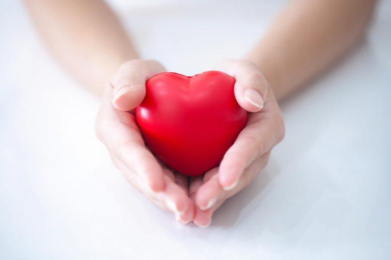 Высокий уровень липидов на ранних сроках беременности связан с врожденным пороком сердца у детей