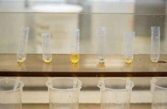 Исследователи обнаружили, что всплеск кислорода совпал с древним глобальным вымиранием