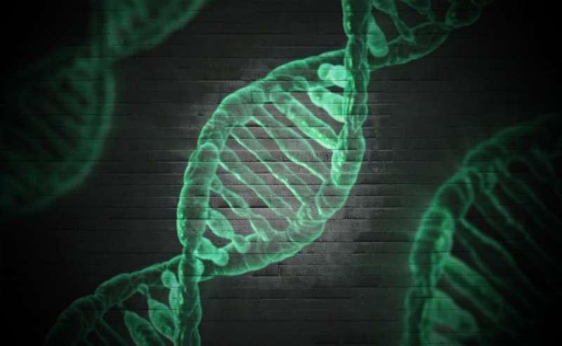 Разгадка еще одного слоя генетического кода позволит создать персонализированную медицину