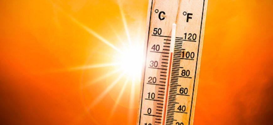 Июль 2021 года был самым жарким месяцем на Земле за всю историю наблюдений